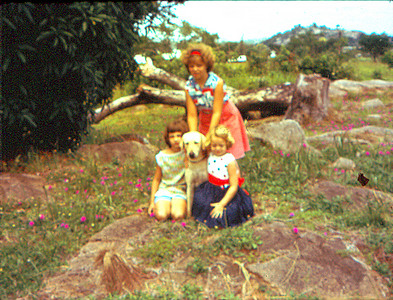 Julie, Julie-the-Dog, Sherie, and Laurie (standing), at Shaki Rock beside the oldest mango tree in Nigeria (reputedly the ORIGINAL mango tree of Africa) sometime in late1964 or early 1965. Julie-the-Dog (so called to distinguish her from Julie-the-Sister) was a sweet middle-aged white lab that we inherited along with the house in Shaki when we returned to Nigeria from the States in 1964. We discovered sometime that year that Julie-the-Dog's mother's name was Sherie. Several years later, after we had left Nigeria, we heard that Julie-the-Dog, who ended up with complete strangers (some Brits who moved to Shaki to oversee the hydroelectric dam project), had a litter of 1 puppy, whom, interestingly enough, the Brits named Laurie.